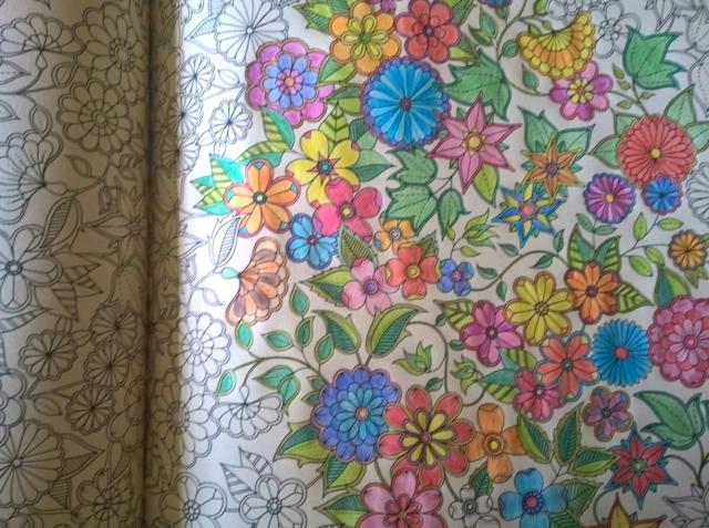 livro-para-colorir-jardim-secreto-5