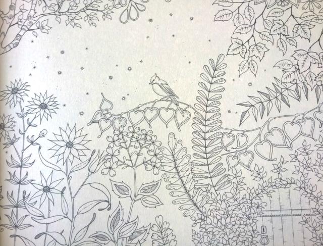 livro-para-colorir-jardim-secreto-6